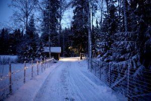 зима снег природа